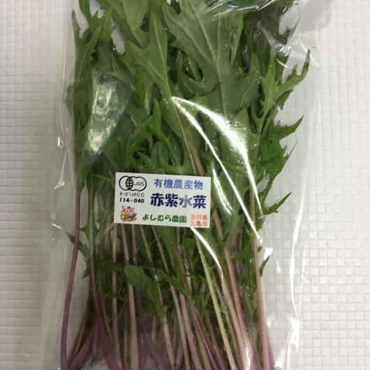 有機赤紫水菜