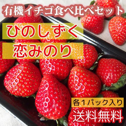 送料無料 有機イチゴ食べ比べセット ひのしずく 恋みのり 各1パック入り熊本県産