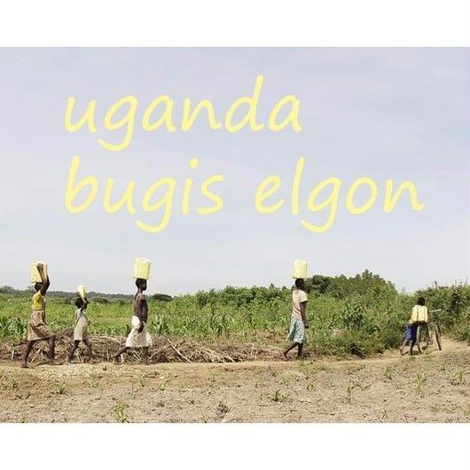 ウガンダ ブギス エルゴン 自然栽培の豆(100g)/深煎り