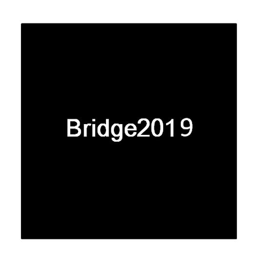 「Bridge2019」