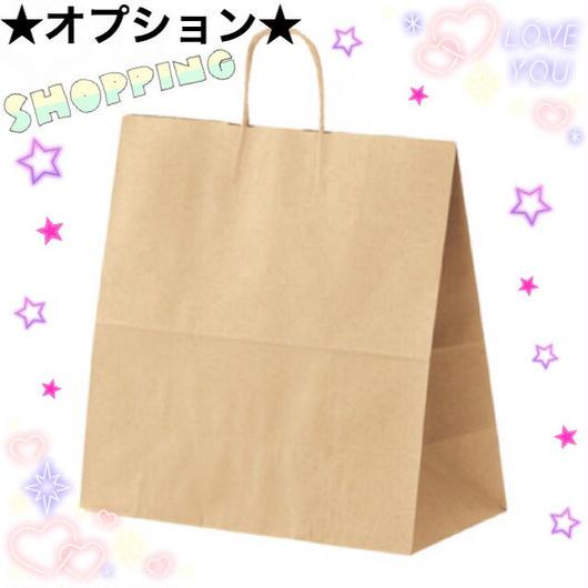 ◆オプション◆  紙袋