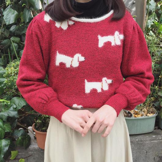 knit 307[FF102]