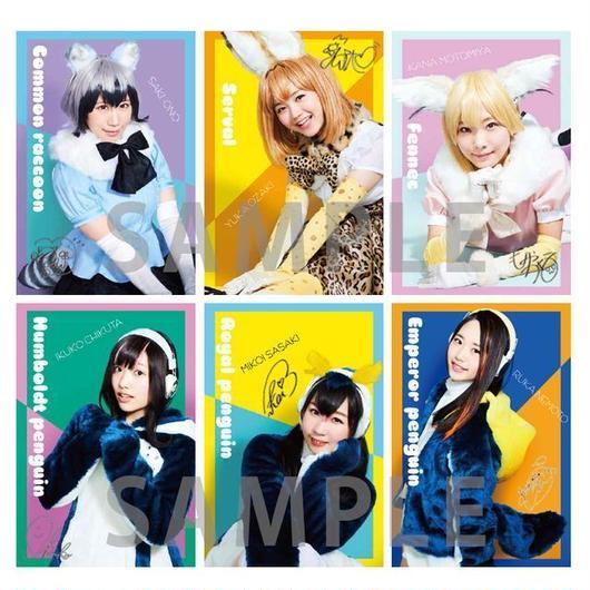 【舞台】ポストカード 17枚セット