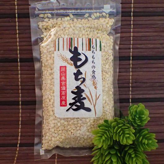 岡山県吉備高原産 もち麦 250g