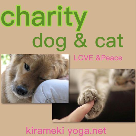 < 2018.07 西日本豪雨 支援金 dog & cat 500 >