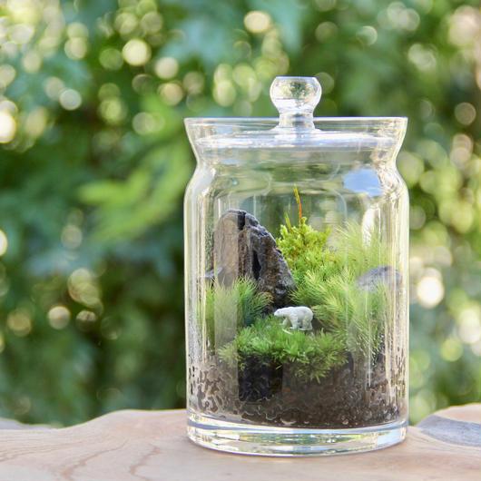 森の白熊(Pot)