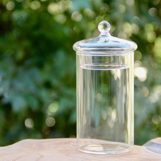 Glass Canister (short)