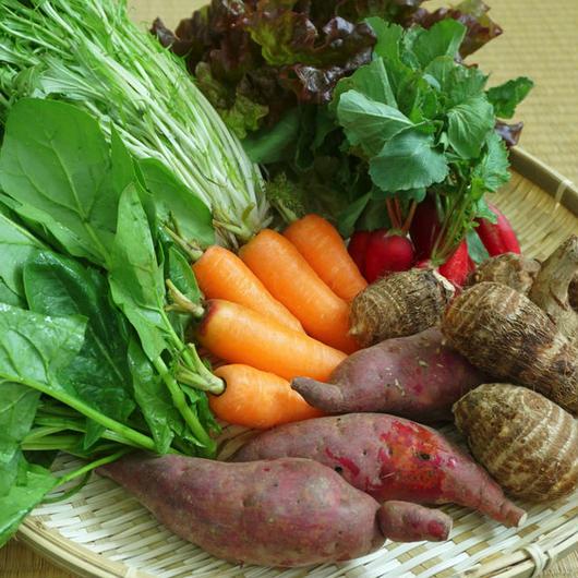 紀南地方のばあちゃんが育てた野菜セット+ばあちゃんの愛情をたっぷり