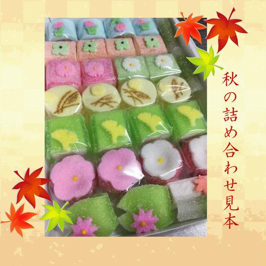 京菓子 半生菓子 おまかせ 詰め合わせ箱(小)