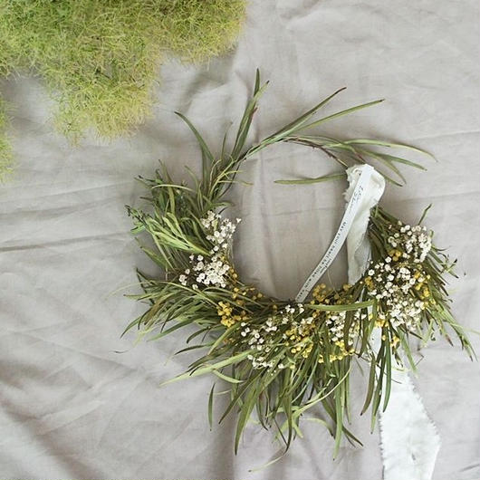 Acacia retinodes & kasumigrass wreath A