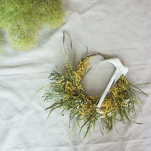 Acacia retinodes & kasumigrass wreath B