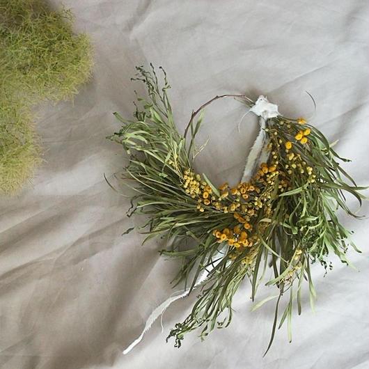 Acacia retinodes wreath B