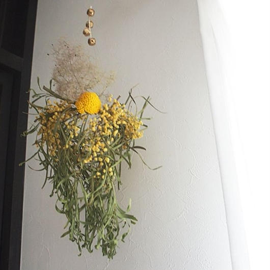 Mimosa wind-bell wreath G