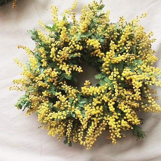 Fresh mimosa wreath