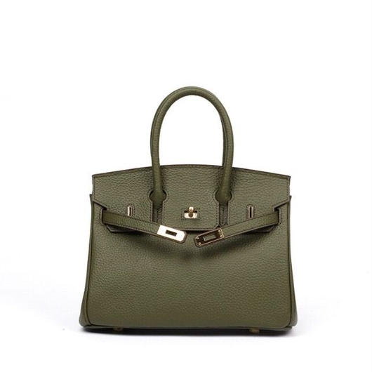Birkin type bag  mini