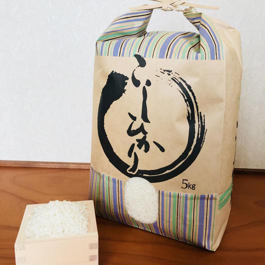 平成29年度静岡県産 精米コシヒカリ (無農薬栽培)5㎏