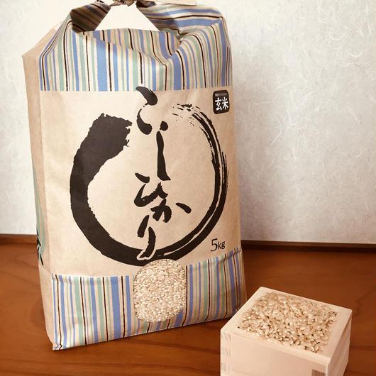 平成29年度静岡県産 玄米コシヒカリ (無農薬栽培)5㎏