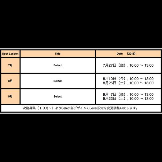 Spot Lesson 8月【Select】仮予約チケット(anudoのマクラメワークショップLevel1以上を受講済みの方のみ)