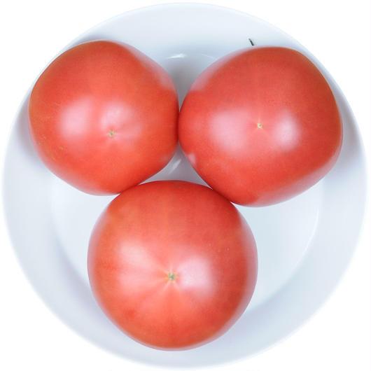 -井出トマト農園- 大玉トマト 桃太郎 500g