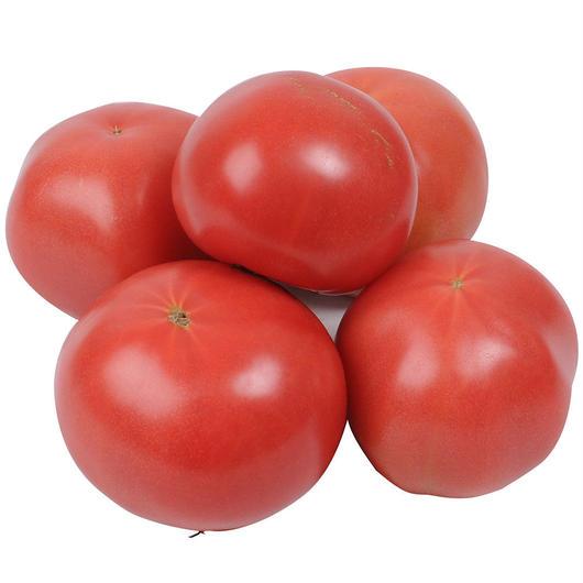 -規格外品- 井出トマト農園 大玉トマト 桃太郎1kg