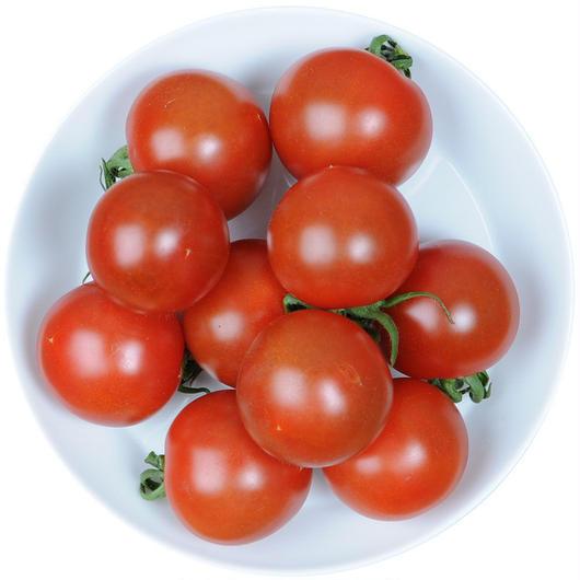 -井出トマト農園- ミディトマト フルティカ