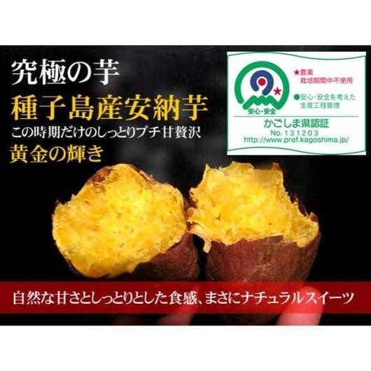 送料無料!!無農薬・種子島産安納芋Mサイズ5kg 無化学肥料栽培
