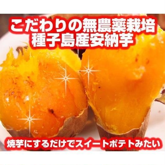 無農薬栽培・種子島産安納芋(あんのういも)Sサイズ/3㎏・送料無料!