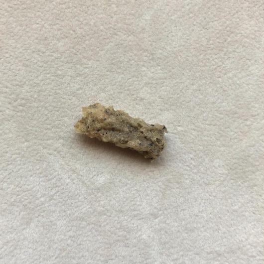 フルグライト/閃電岩/雷管石-2
