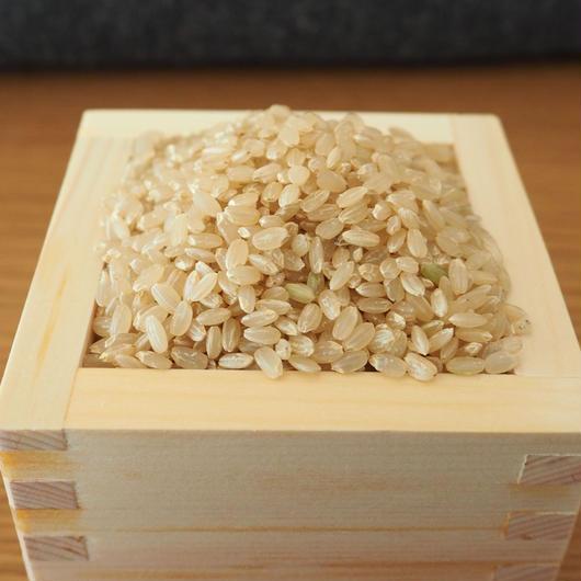 〜玄米〜🌾有機無農薬栽培 啓造さんのおこめ2kg🌾