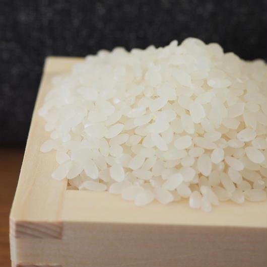 〜白米精米〜🌾有機無農薬栽培 啓造さんのおこめ2kg🌾