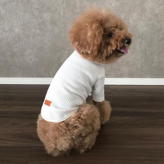 PET lib knit tops ♣︎ ホワイト