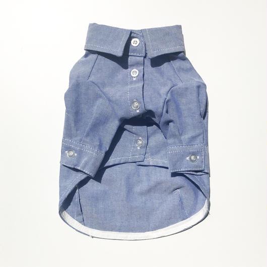 PET color shirt ♣︎ ブルー