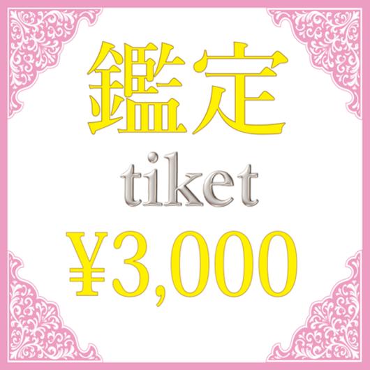 ¥3,000チケット