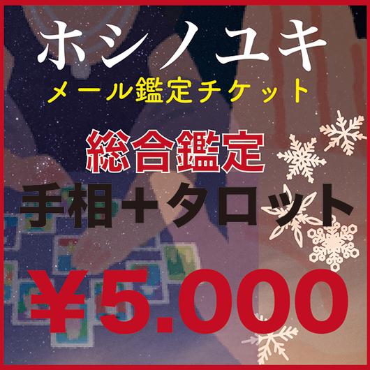 ホシノユキ・「総合鑑定」¥5,000チケット