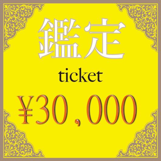¥30,000チケット