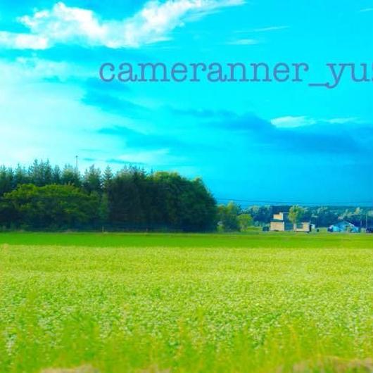 空と草原 の写真(無料版)
