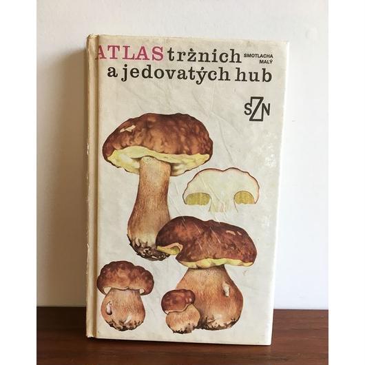 チェコ きのこ本 book-044