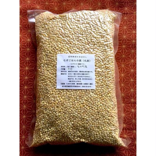 自然栽培(無農薬・無肥料) むぎごはんの素(丸麦)1kg[たまゆら草苑] made in 栃木県
