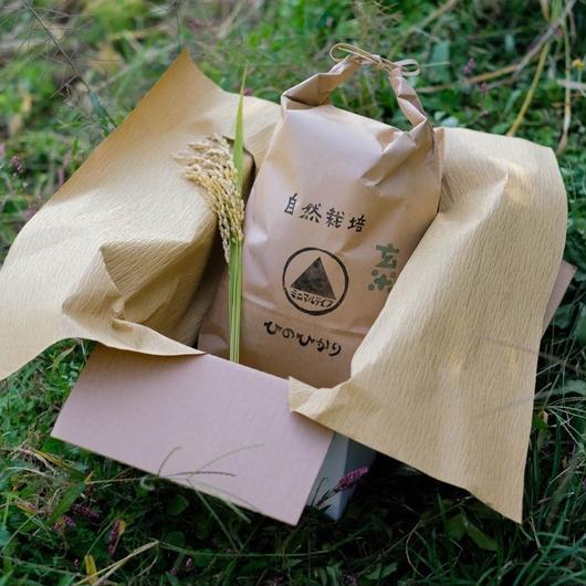 自然栽培(無農薬・無肥料) 天日干しヒノヒカリ 玄米5kg(〜10kg購入可)[minimal life] made in 奈良県