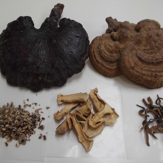 *強力きのこ煎じ茶7包又はティーバッグ12包(お粉が苦手な方にお勧め)貴重なメシマコブやチャーガ、アガリクス、ヤマブシ茸、霊芝などの強力なキノコ類のお茶です。術後や免疫力アップに役立ちます。送料込み!
