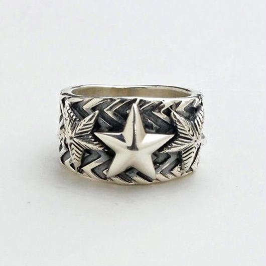Ring Wave Gear 3 Star