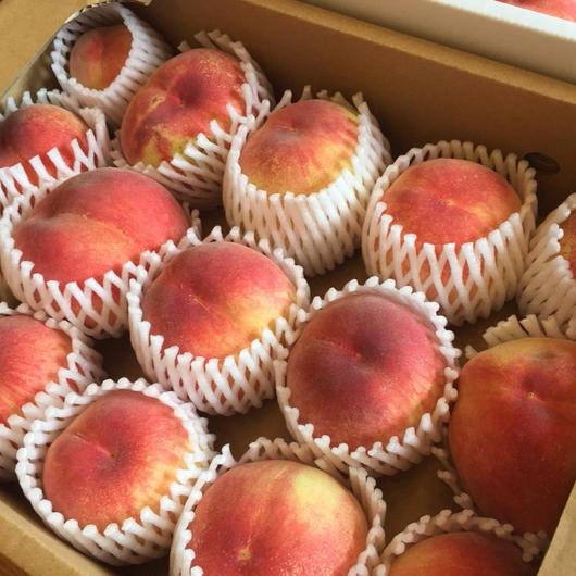 《配送予約》◆規格外1箱◆特別栽培の木成り完熟!伊東さんの「桃」