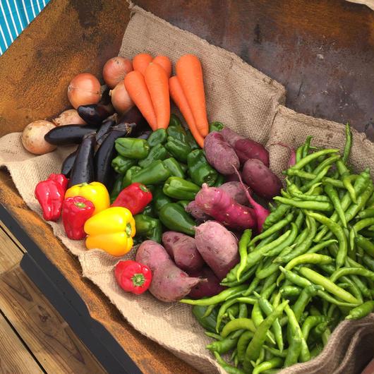 中井農園・旬の詰め合せ野菜箱