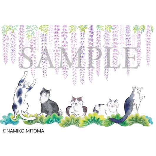猫舞伎ポストカードセット 〜心ばかり〜