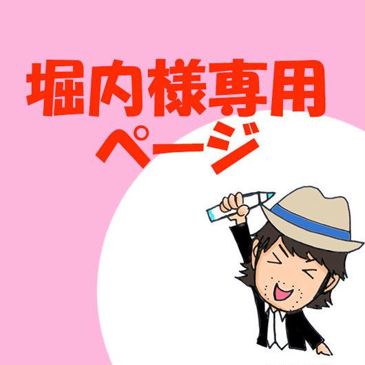堀内様専用ページ
