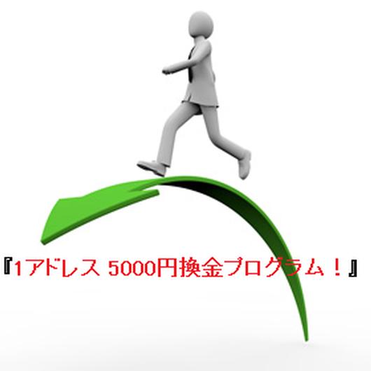 1アドレス 5000円換金プログラム!