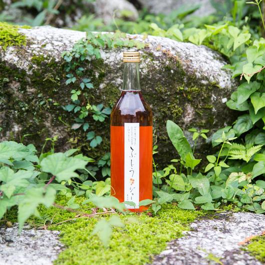 【クリスマスやギフトに最適】まるでノンアルコールのロゼワイン!『森の生活:ナイアガラジュース』(720ml×1本)箱入り