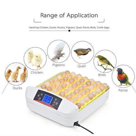 鳥のLED孵卵器 PSE認証 ふ卵器 孵化器 インキュベーター 最大56個