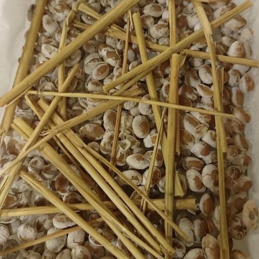 手作り納豆100g ※要冷蔵便