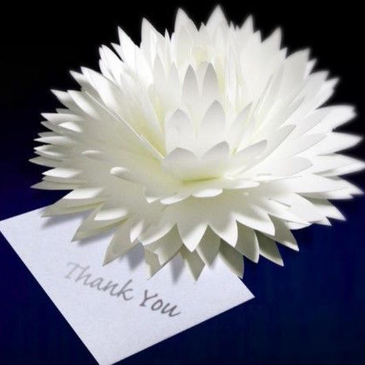 咲くようにひらく 花のサンキューカード〈ダリア〉 forバースデー・ウェディング・アニバーサリー